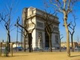 Arch of Triumph and tree