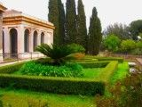Garden of hill in Palatino