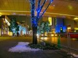 Snow as shown in around Roppongi