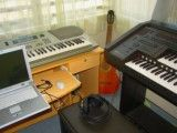 Electronic organ and synthesizer and guitar and personal computer