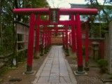 Many bright red torii of Sanko god of harvest Shinto shrine
