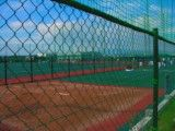 Practice place of baseball of wire net