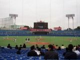 Jingu Stadium from the truth of catcher back