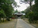 Shinto shrine and approach to a shrine of green and narrowing