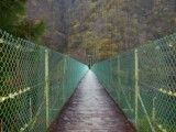 Suspension Bridge in mountainous district of autumn