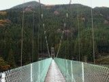 View of Suspension Bridge and mountain