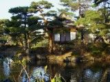 Japanese style and old building and pine and pond