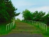 The stairs in prefectural Makuhari beach park