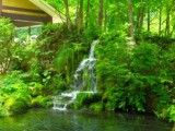 Small full green it & waterfall