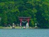 Torii of one of Shinto shrine