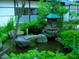 Small pond in buddhist temple