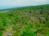 Rock zone where green grows up